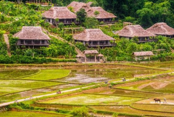 agence-voyage-locale-francophone-Hanoi-Mai Chau Ecolodge