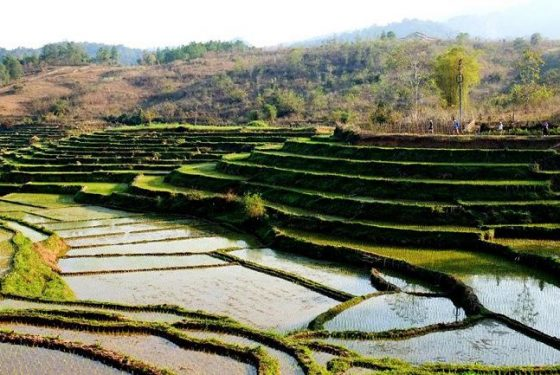 paysage du village Ban Buoc
