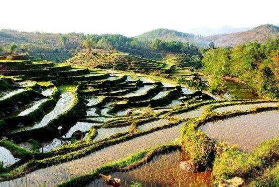paysage di village Ban Buoc