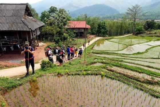 randonnée aux alentours de Mai Chau